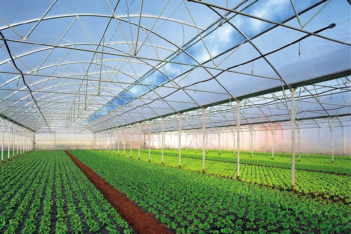 Turnkey commercial greenhouses